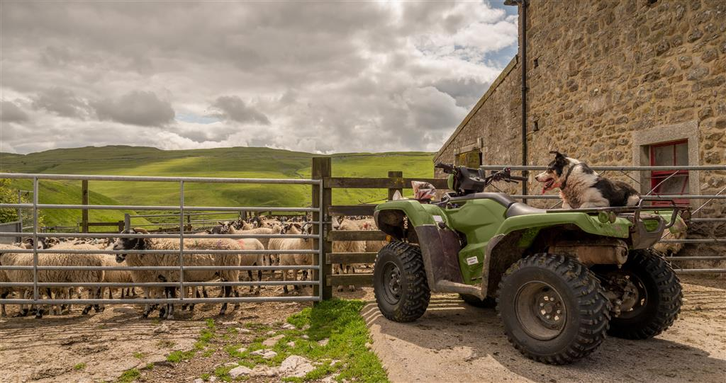 Discounts on ATVs for Countryside members