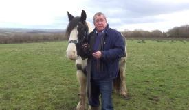 Actor backs horse charity's appeal