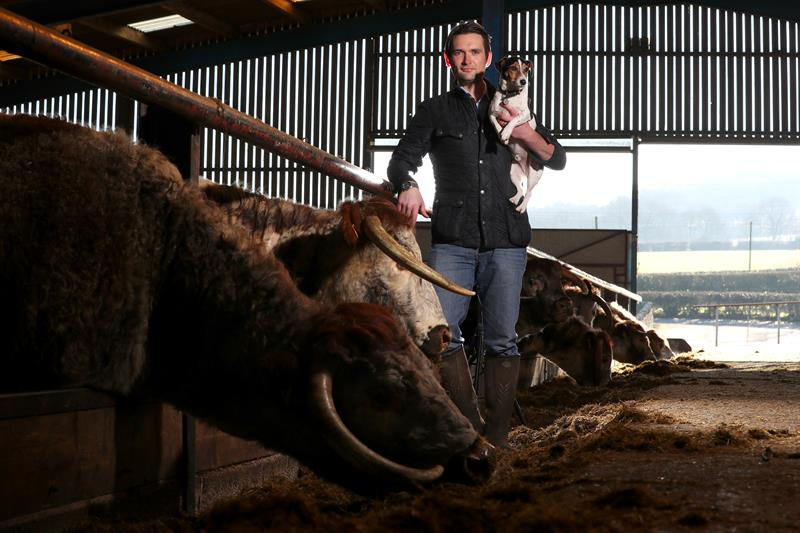 Joe Stanley: Why British grazed livestock are essential to our food system