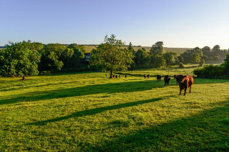 How are British farmers helping to tackle climate change?