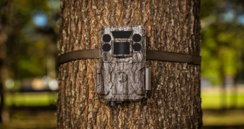 Countryside members can now save up to 30% on the RRP of Bushnell trail cameras
