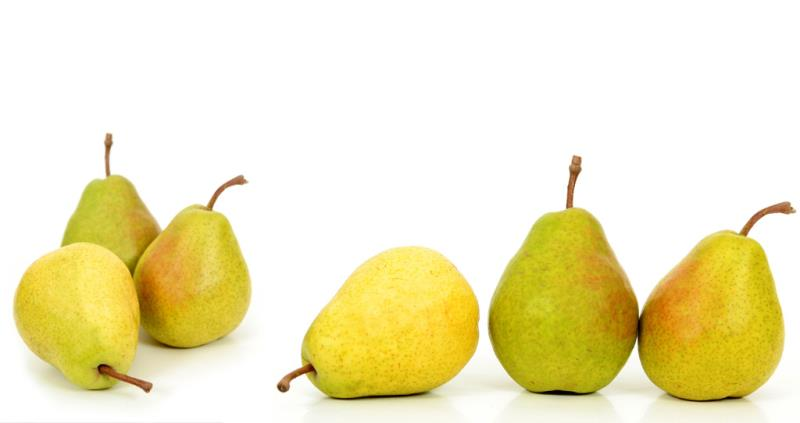 Find out about growing pears