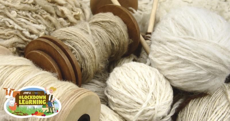 #LockdownLearning: wool the wonder fabric