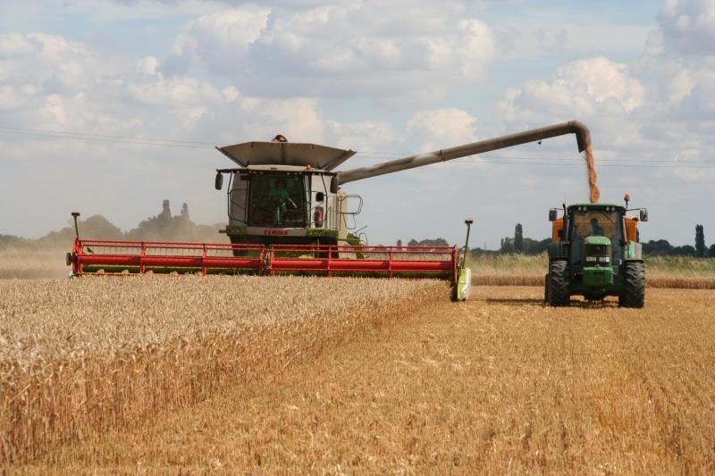 Crops - learn about the UK arable sector